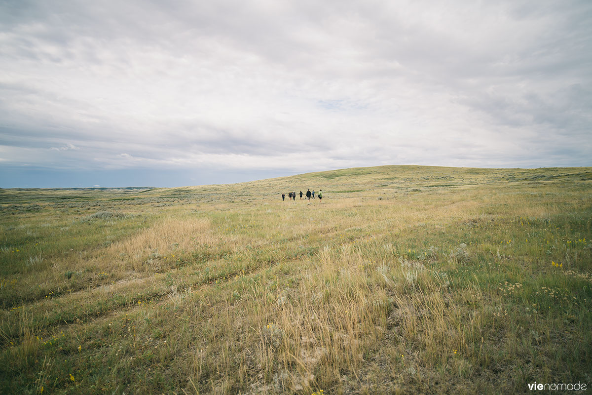 Randonnée dans le Parc National des Prairies